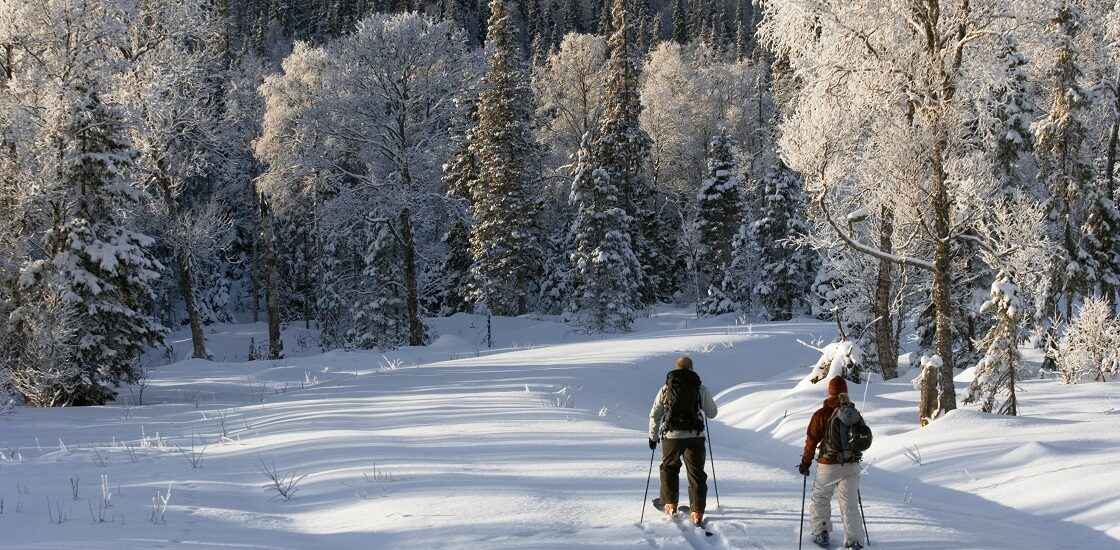 Чаще всего от зимних травм страдает молодёжь