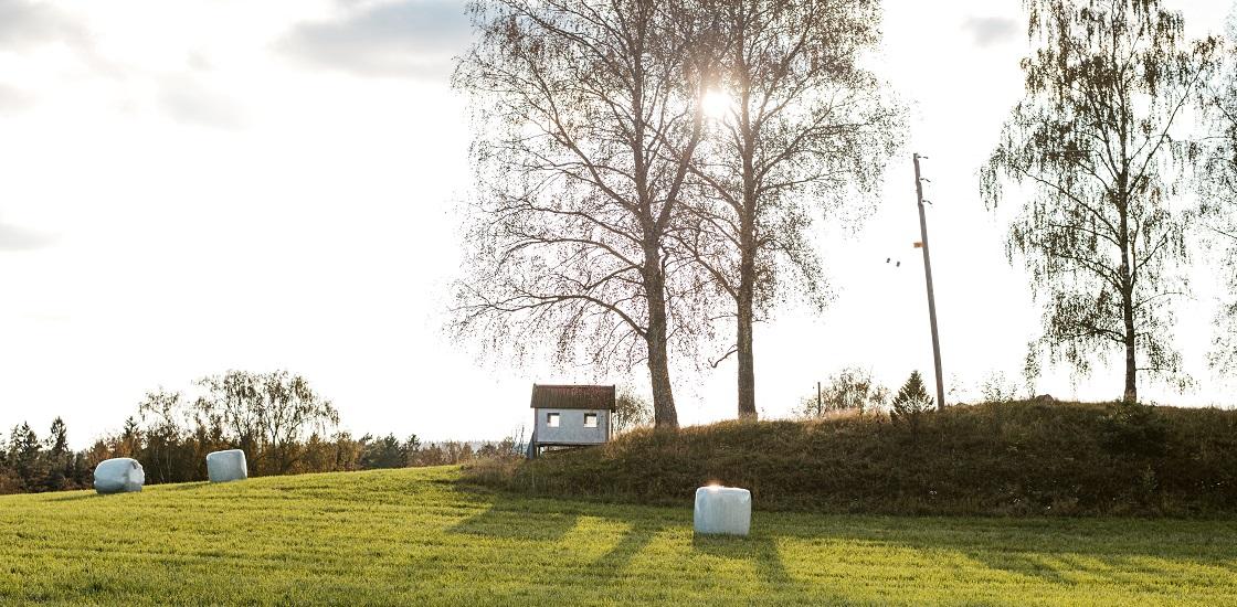 Pensionifondide tootlus ja investeeringud Eesti majandusse