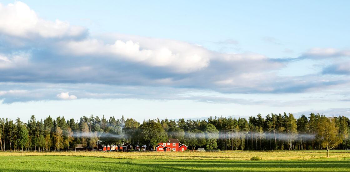 Naaberriikide mõju Eesti majandusele on vähenemas