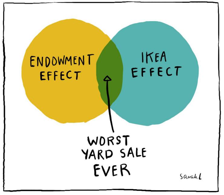 joonis endowment effect