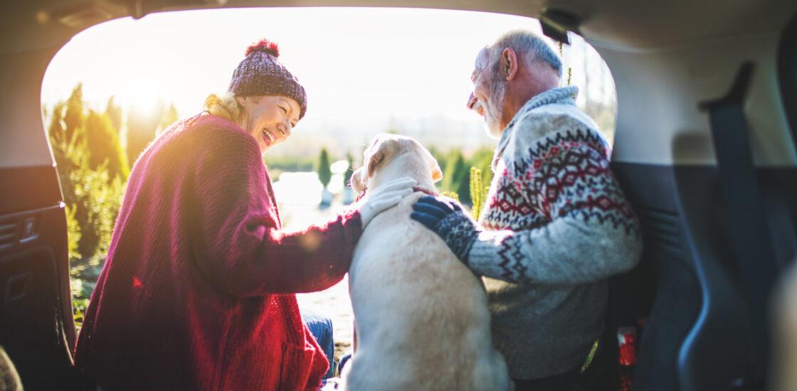 Mis toimub pensioniga?